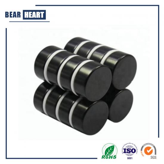 Black Epoxy Disc Neodymium Magnets